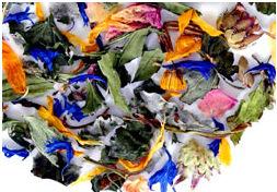 Platano de Andy Warhol